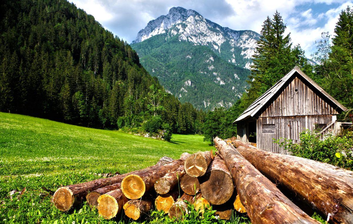 https://www.intarzia.ro/wp-content/uploads/2019/08/alps-barn-cabin.jpg