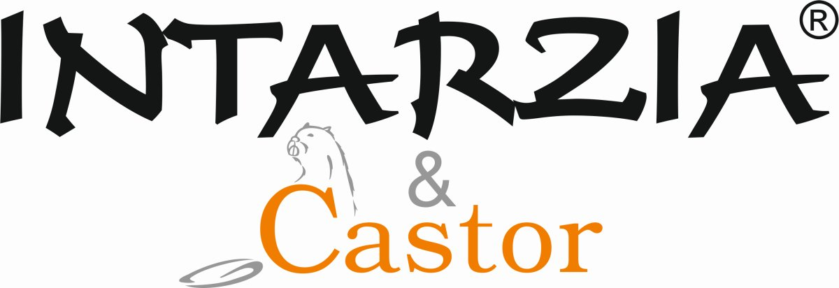 https://www.intarzia.ro/wp-content/uploads/2020/01/intarzia-n-castor.jpg